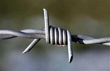 "Barbed Wire Is the Realistic ""Handssors"""